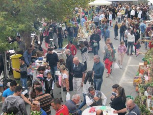 Zivania Festival 2